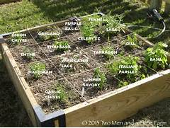 Herb Garden Design by Two Men And A Little Farm RAISED BEDS LET THE GARDENING BEGIN