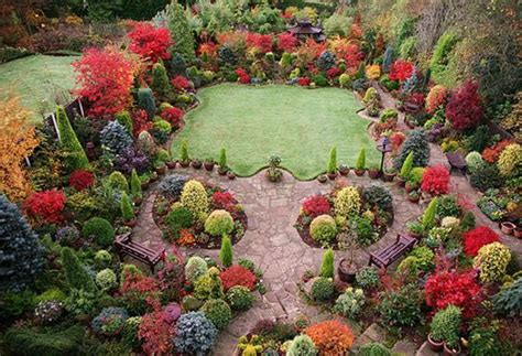 fall leaves decorating gardens  backyards  outdoor