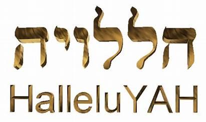 Hebrew Hallelujah Word Halleluyah Meaning English Words
