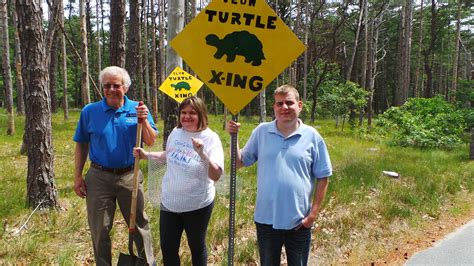 Freedom Boat Club Employee Benefits by Cape Abilities Turtle Team Are Saving Endangered Turtles