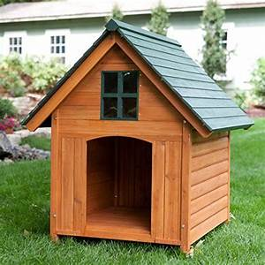 Extra large outdoor dog house dog kennel 40w x 44d x 47h for Large outdoor dog house