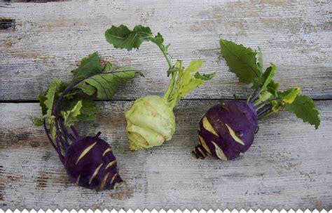 cuisiner les choux chou à feuilles chou fleur chou brocoli semer planter entretenir