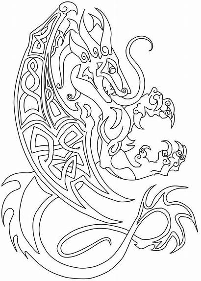 Celtic Dragon Coloring Pages Dragons Commish Drawings