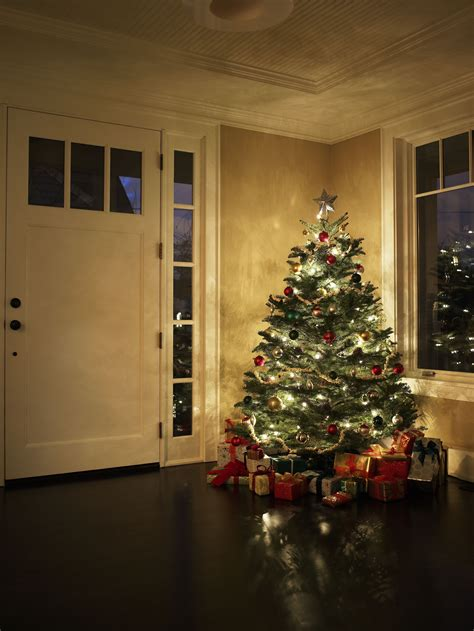 taking care of christmas trees when to take your tree
