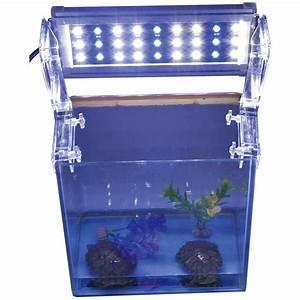 Aquarium Led Beleuchtung : blau weiss meerwasser s wasser aquarium tank led beleuchtung aufsatzleuchte ebay ~ Frokenaadalensverden.com Haus und Dekorationen