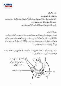 Urdu Pregnant Manual