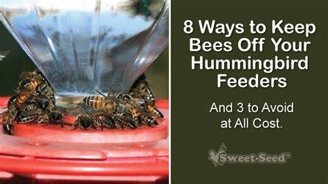 how to keep honey bees away from hummingbird feeders keep ants and bees away from your hummingbird feeders