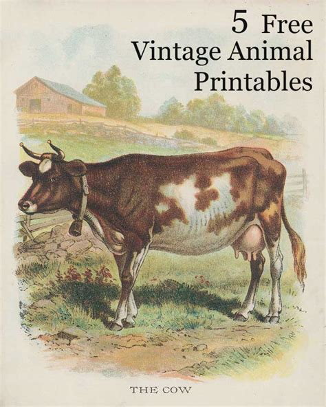 Vintage Farmhouse Images by Vintage Animal Printables House Of Hawthornes