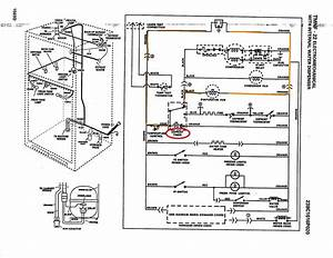 Defrost Timer Wiring Diagram Cold Room