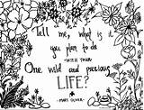 Poem Adult Oliver Mary Coloring Hand Drawn Drawing Adults Summer Getdrawings sketch template