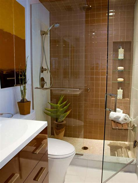 Small Bathroom With Houseplants And Walk In Shower With