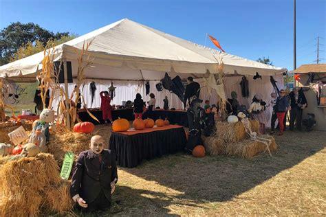 the godmothers of timothy murphy school pumpkin field st 318 | godmothers5 0