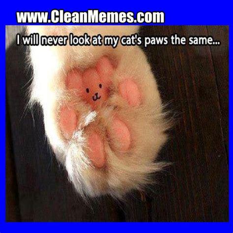 Funny Cat Memes Clean - clean cat memes image memes at relatably com