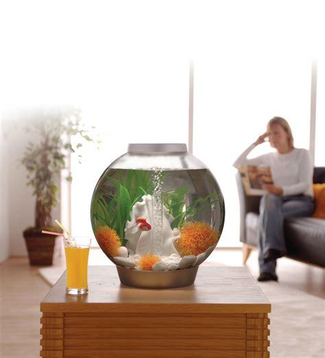 acheter du verre pour aquarium d 233 coration aquarium rond