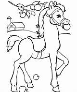 Horse Coloring Pages Baby sketch template
