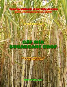 Sugarcane crop-ebook