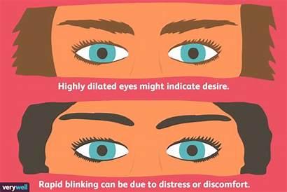 Language Eyes Expressions Facial Reading Eye Importance