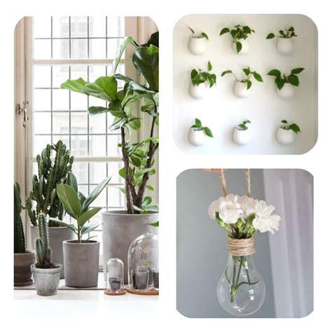 comment accrocher un meuble de cuisine au mur comment décorer intérieur avec des plantes article