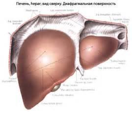 Симптомы при болезни печени и препараты