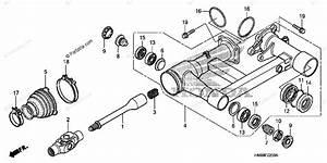 Honda Atv 2007 Oem Parts Diagram For Swingarm