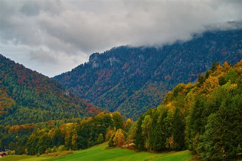germany, Mountains, Forests, Autumn, Trees, Inzell, Nature ...