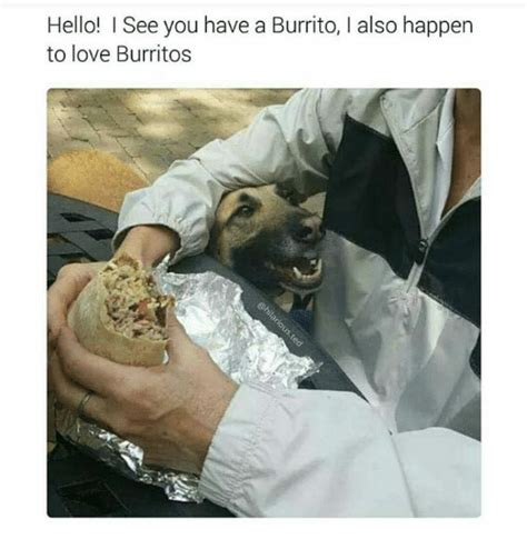 funny burritos memes    sizzle defeation