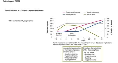 diabetestypepathophysiology