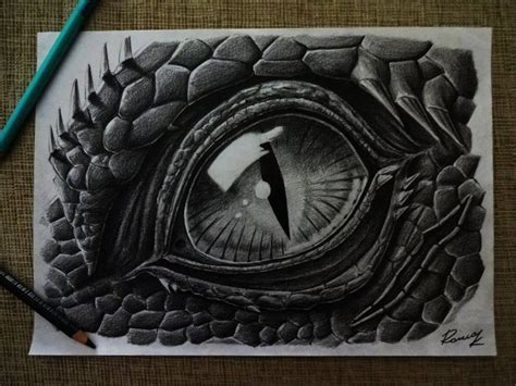 reptile eyes drawing  eye   reptile  mediums