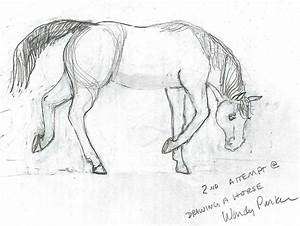 How To Draw A Horse Step By Step Realistic