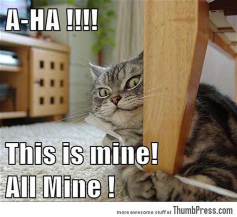Mine Meme - this is mine