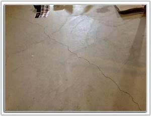 cat urine concrete floor flooring home decorating With urine chat parquet