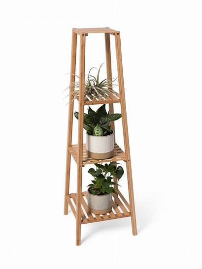 Tall Plant Bamboo Stand Stands Plants Tier