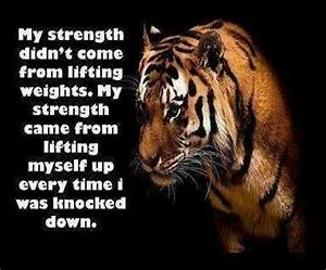 90 best ~Animal... Wolf Vs Tiger Quotes