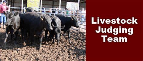 livestock judging team competitive teams agricultural