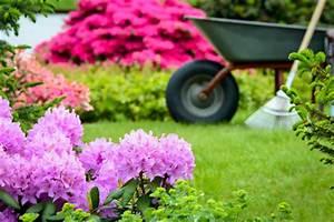 Blumen Im Garten : gartenblumen 2013 im garten blumen auss en und gartengew chse anpflanzen wohnungs ~ Bigdaddyawards.com Haus und Dekorationen