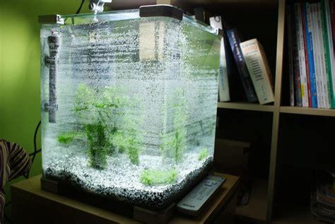 acheter aquarium 40l