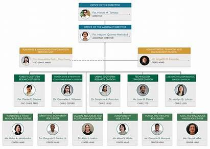 Chart Organizational Denr Development Layout Research