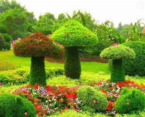 Mushroom Garden Art Pictures, Photos, And Images For