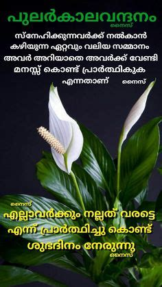 Malayalam good morning wish with inspiring. 21 Best Malayalam bibile Wallpapers images   Bible quotes, Verses, Bible