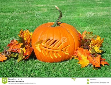 fish bone carved  festive fall pumpkin stock image