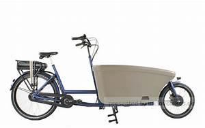 E Bike Klappräder : dolly bikes family bafang nexus 8 e bike pedelec ~ Kayakingforconservation.com Haus und Dekorationen