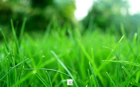 Background Refresh Refresh Ii Wallpapers Refresh Ii Stock Photos