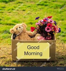 Bear Flower Bouquet Box Good Morning Stock Photo 234639238 ...