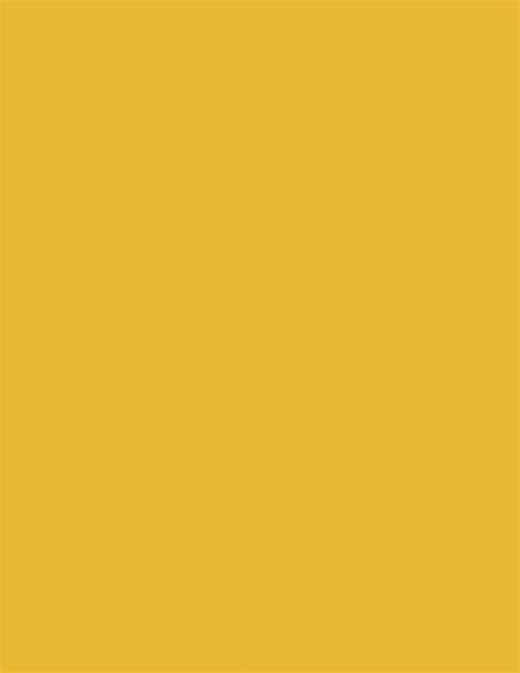 amarillo color amarillo decoraci 211 n masglo