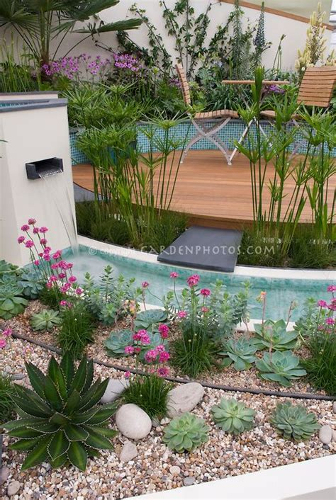succulent flower bed waterfall in modern water garden with raised beds circular wooden deck white walls perennials