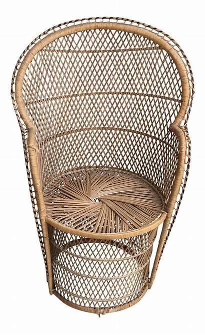 Chair Peacock Wicker Armchair Century Mid 1960s