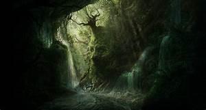 Forest, Dark, River, Waterfall, Wallpaper