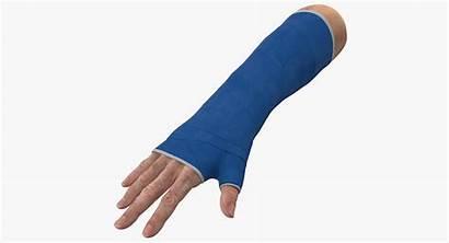 Cast Wrist Fiberglass Turbosquid Hq Models 3d