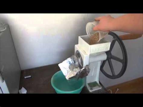 [vidéo] Ail des ours comment faire sa teinture mère
