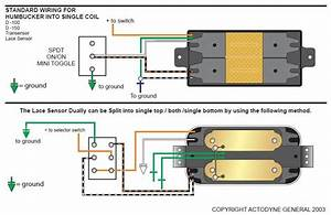 Strat Lace Sensor Humbucker Wiring Diagram